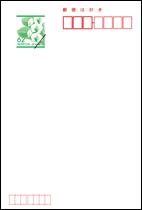 胡蝶蘭はがき62